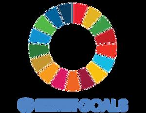 #Sustainable Development GOALS @SDG