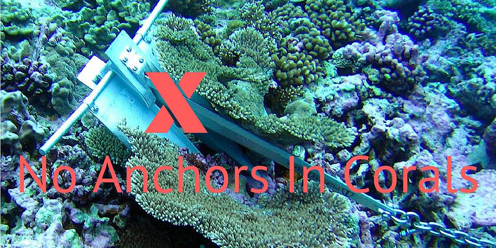 https://www.reefliferestoration.com/safe-anchorage-mooring-stations