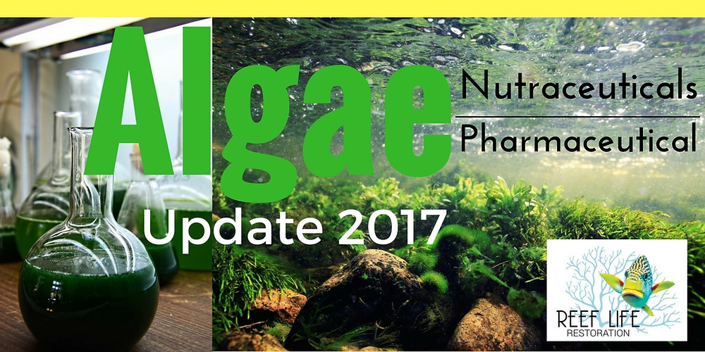 Algae Updates Pharmaceuticals