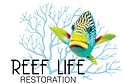 Reef Life Restoration | Reefbuilder | Coral Reef Preservation   coral reef preservation, artificial coral reefs, coral reef rehabilitation, coral reef restoration projects, green ocean, reefbuilder, smartmaterials, nanomaterials,  sustainability,   coral reef restoration methods, planting coral reefs, artificial reef design, artificial coral reef inserts, artificial coral reefs,