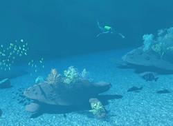 Baby Turtle Coral Farm