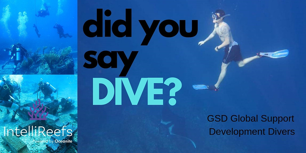 Dive Experts GSD Disaster Response Outreach