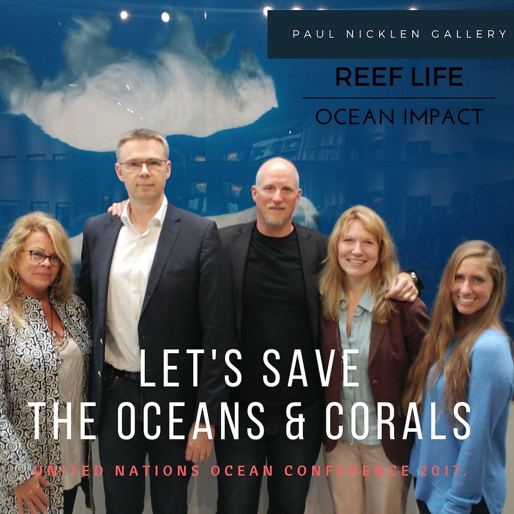 Paul Nicklen Gallery With Ocean Impact