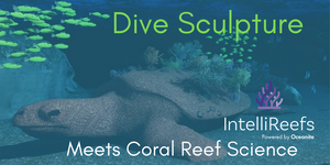 Dive Art Meets Coral