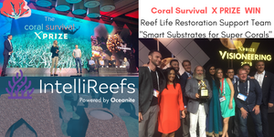 X Prize WIN Visioneering 2018 Coral Survival
