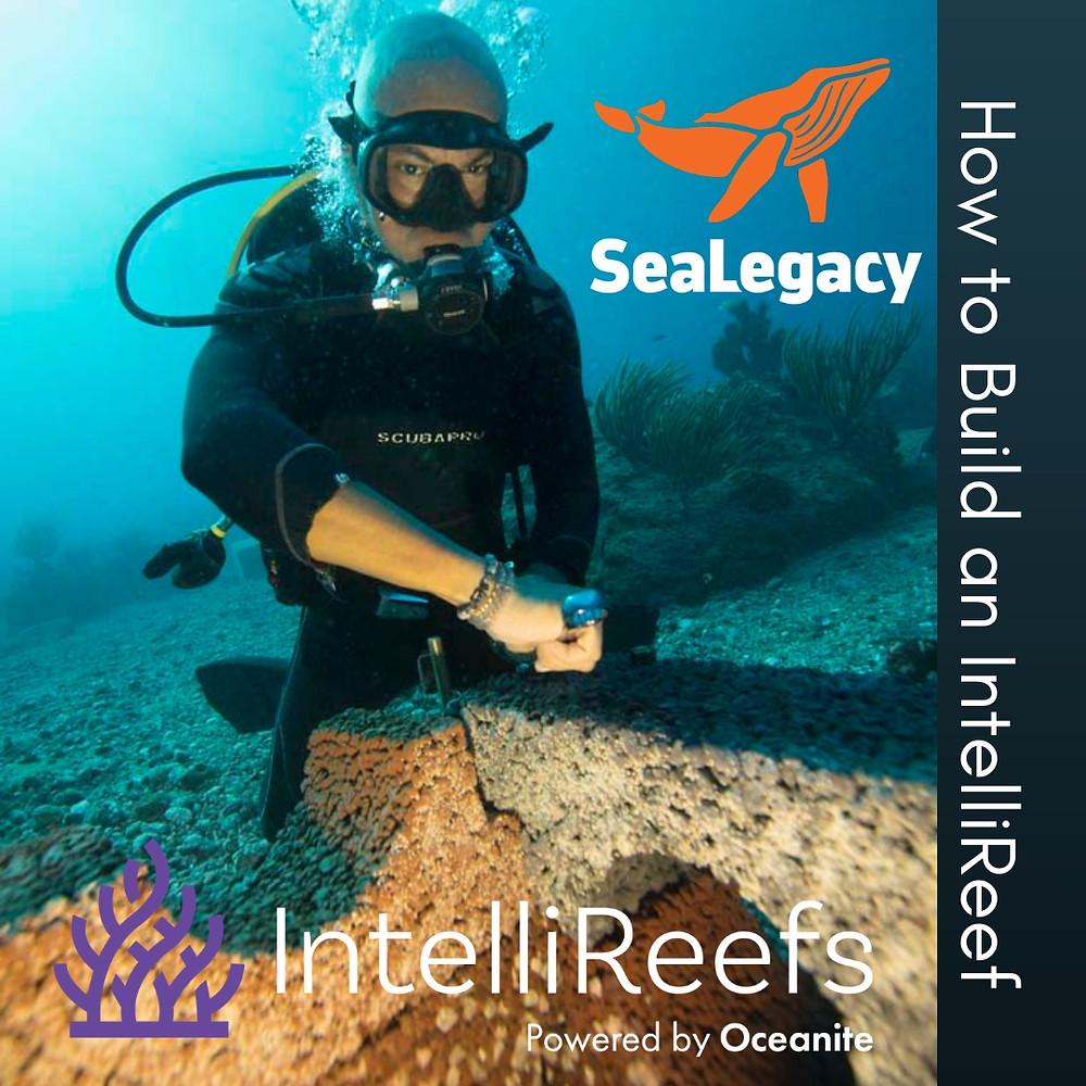 #turningthetide #SeaLegacy