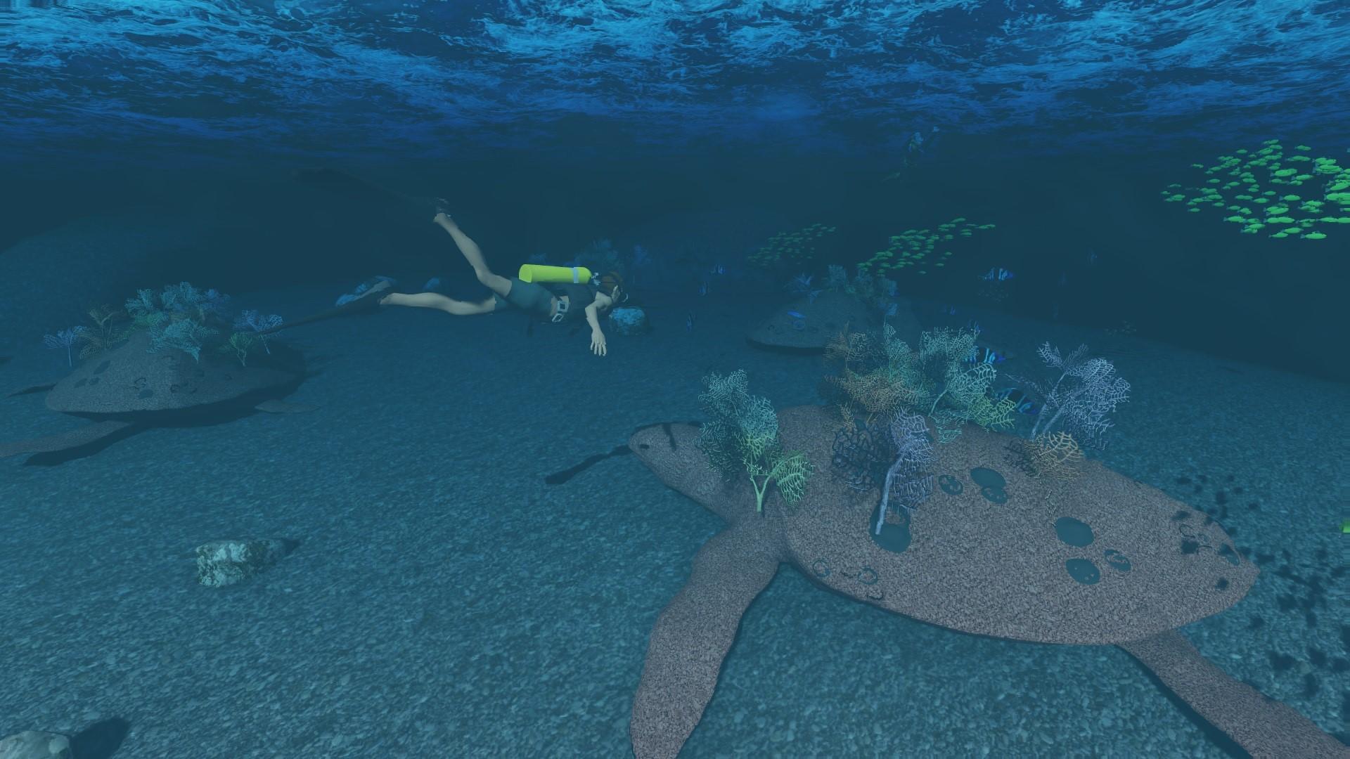 Turtle Village Scuba Diver