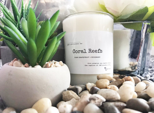 Serenity Candle Supports Coral Reefs