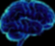 brain-transparent.png