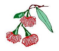 Mudgeeraba School Logo