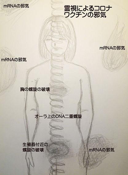 惑沈の霊視.jpg