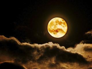 ★9月14日(木)いけとおがわ 親子広場いちご お月見だんごと工作
