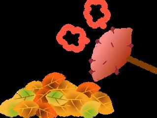 ★11月16日(木)いけとおがわ 親子広場いちご 焼き芋と落ち葉の工作