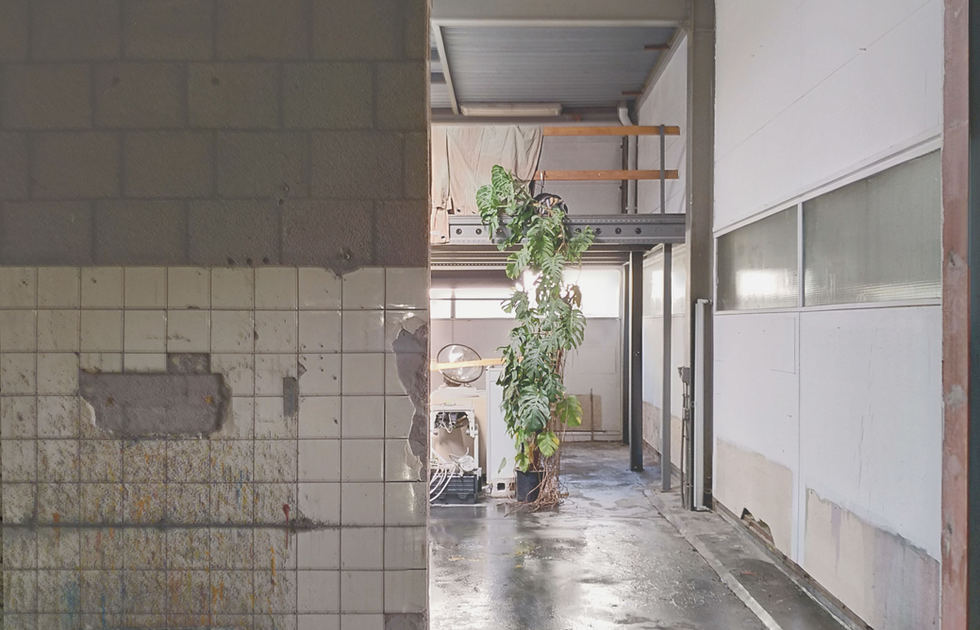 Studio Neering - opening