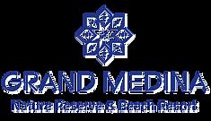 GrandMedina.png