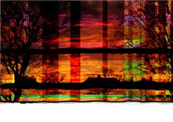 backyard sunset.jpg