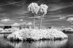 Twin Palm Island