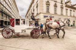 Horse and Carriage, Vienna