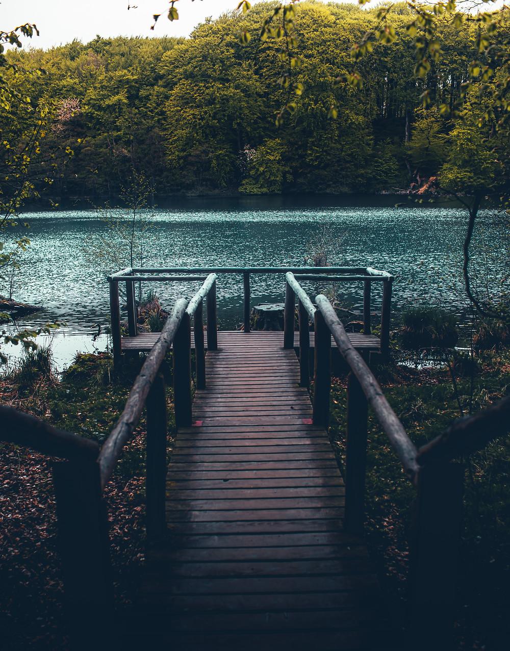 Park Jasmund Niemcy pomost