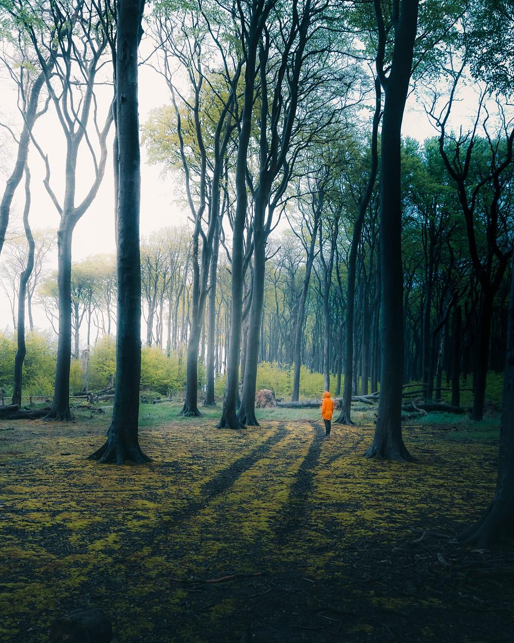 las duchów niemcy