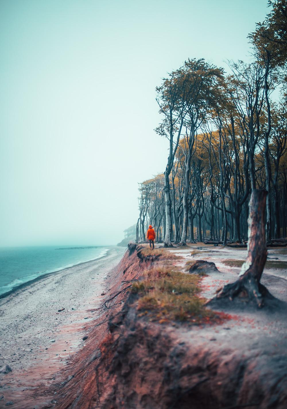 osoba nad brzegiem morza