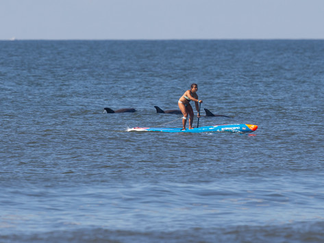 5 Mental Health Benefits of Stand Up Paddling