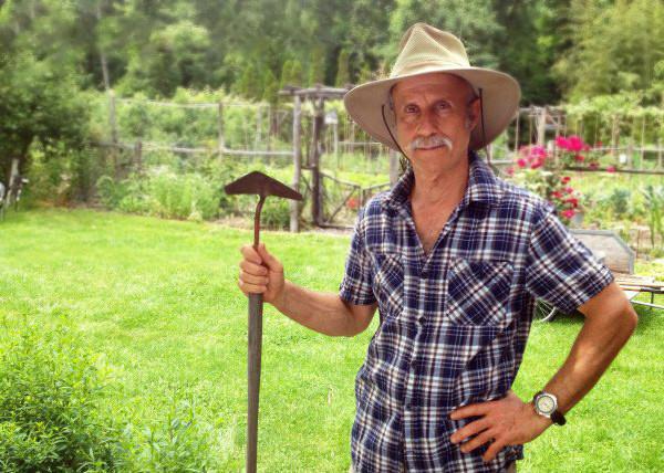10 полезных  советов при посадке садовой голубики от Ли Рейха.