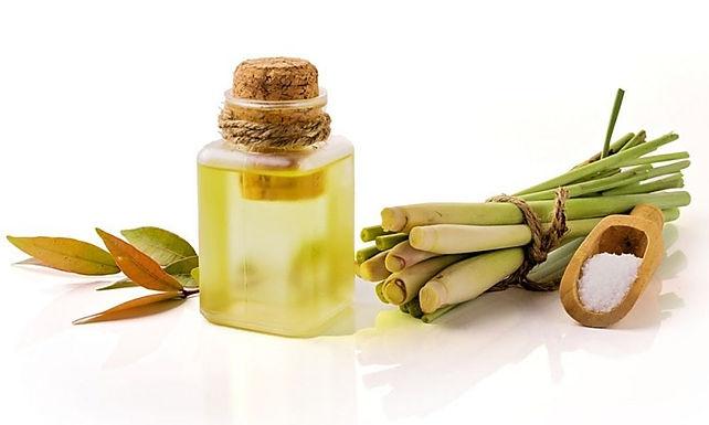 Citronella Oil - Organic