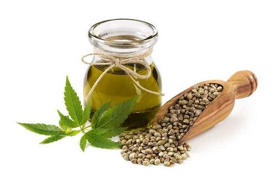 Hemp Seed Oil - Organic