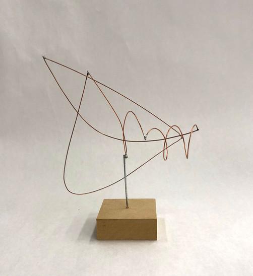 Wire Sculpture (2018)