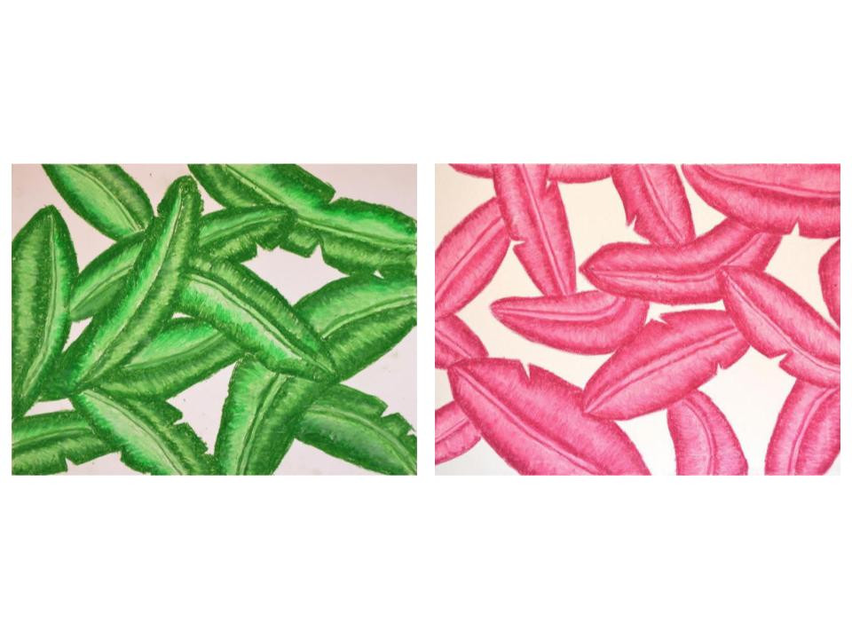 leaf drawings.jpg