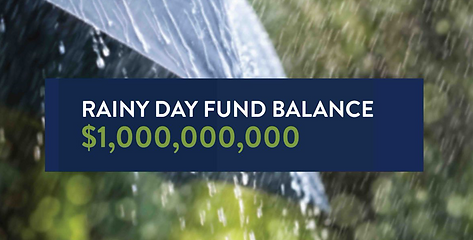 Rainy day fund.PNG
