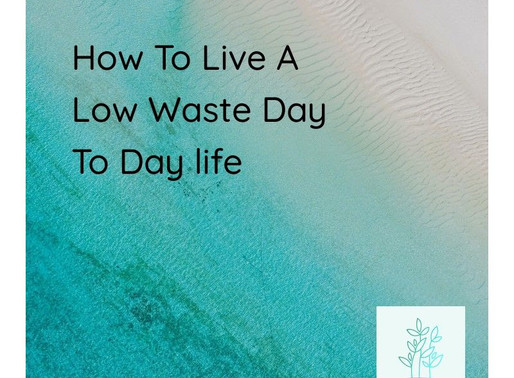 How To Live a Low Waste Day To Day Life