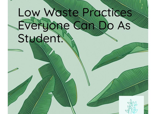 Low waste practices every one can do as student