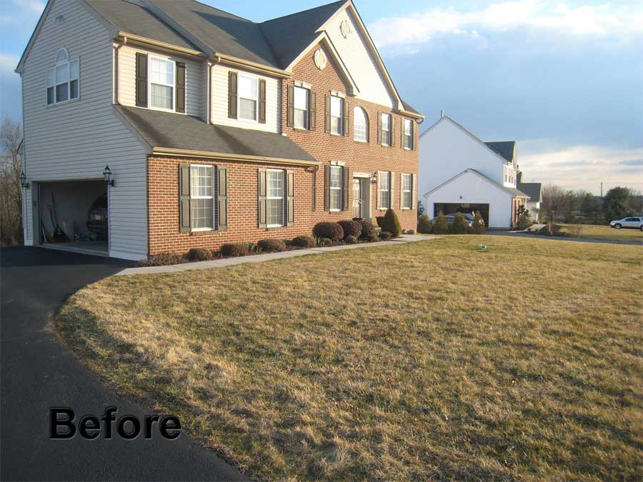 front-yard-before