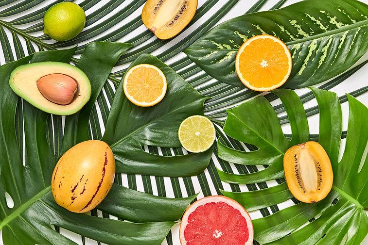tropical-background.jpg