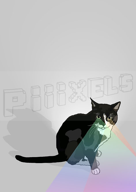RAINBOW CAT GREETING CARDS (Set of 5)