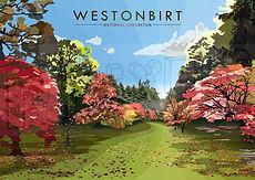 WESTONBIRT5.jpg