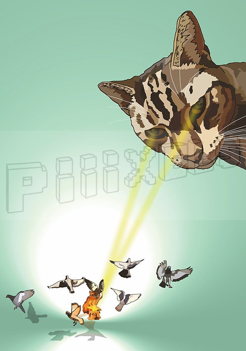 Cat / Pigeons Greeting Card