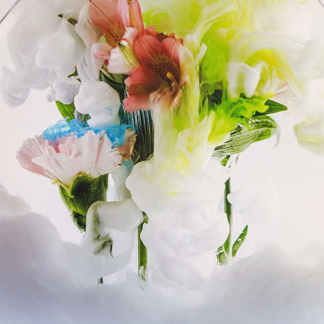 Flowers in Water with Ink