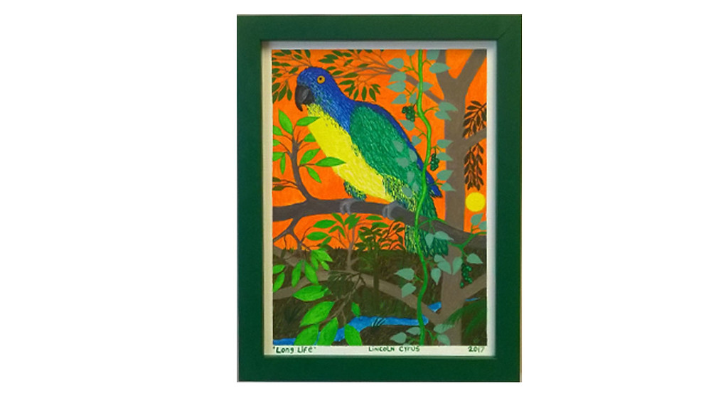 Long Life painting of a parrot