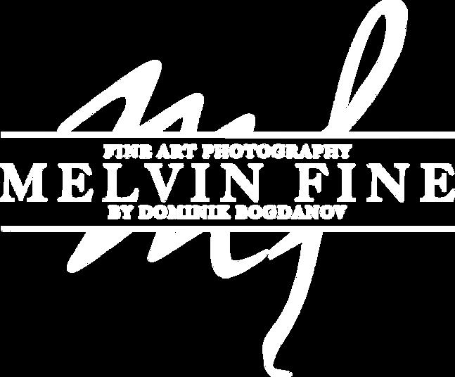 dominik-bogdanov-melvin-fine-fotograf-salzburg