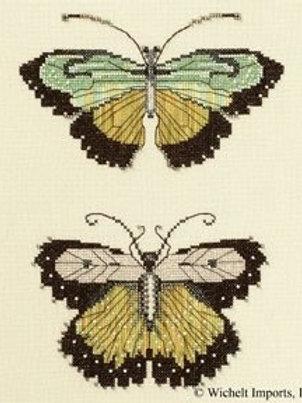 Butterflies of the Meadow | Nora Corbett Designs