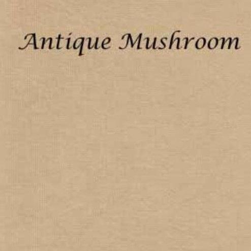 Antique Mushroom | Evenweave | Silkweaver Fabrics