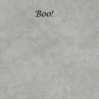 Boo! | Hardanger | Silkweaver Fabric