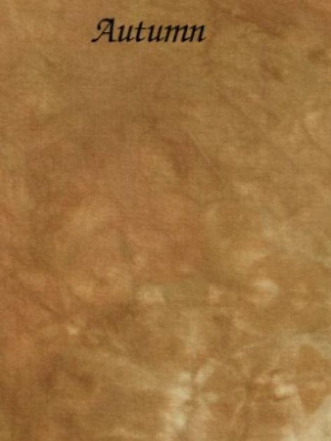 Autumn | Aida | Silkweaver Fabrics