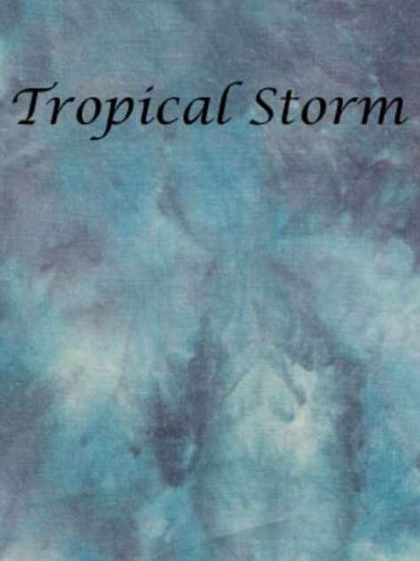 Tropical Storm   Evenweave   Silkweaver Fabrics
