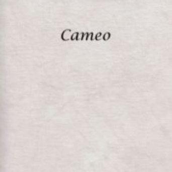 Cameo | Hardanger | Silkweaver Fabric