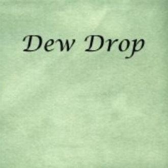 Dew Drop | Aida | Silkweaver Fabrics