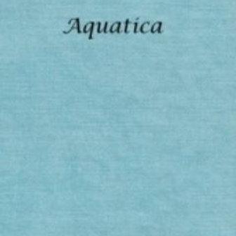 Aquatica | Aida | Silkweaver Fabrics